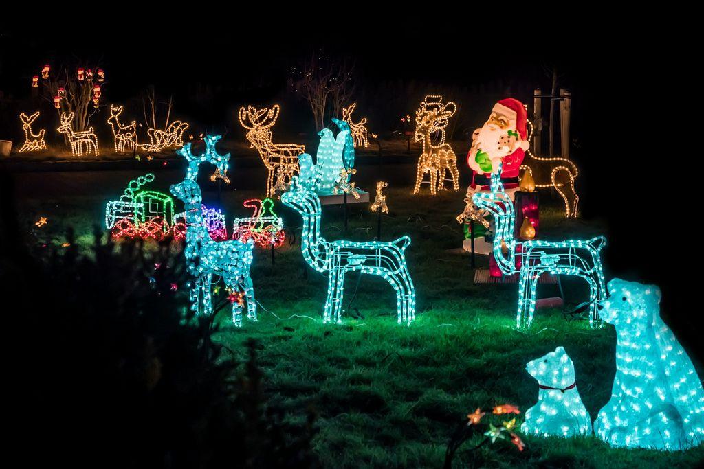Vánoční osvětlení ve formě různých postav zvířat.